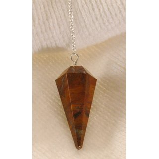 Petrified Wood Pendulum faceted